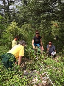 Orchamp validation des protocoles sol et végétation