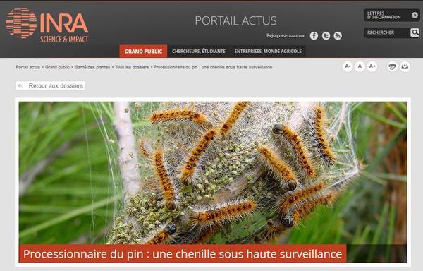 2013 site web une chenille sous haute surveillance