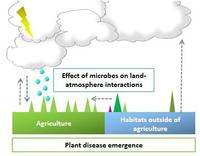 Effect of microbes on land-atmosphere interactions