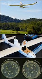 Utilisation d'un drone pour collecter des échantillons à 50 m au-dessus du sol (Jimenez-Sanchez, C. et al., 2018)