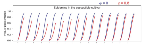Typical epidemics simulated by the model at landscape scale