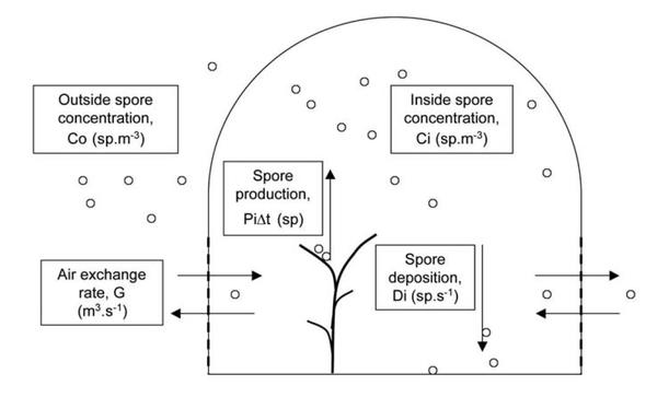 Leyronas, C., Fatnassi, H., Bardin, M., Boulard, T., and Nicot, P.C. 2011. Modelling Botrytis cinerea spore exchanges and production in unheated greenhouses. Journal of Plant Pathology, 93, 407-414