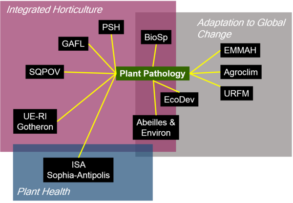 Main interactions within the INRA-PACA centre