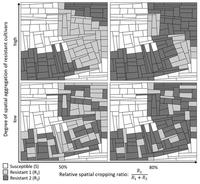 Examples of simulated landscapes allocated with a 3-cultivar mosaic