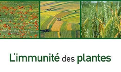 Lannou, C. (Coordinateur), Roby, D. (Coordinateur), Ravigné, V. (Coordinateur), Hannachi, M. (Coordinateur), Moury, B. (Coordinateur) (2021). L'immunité des plantes. Pour des cultures résistantes aux maladies. Editions Quae, Versailles, FRA, 392 p.