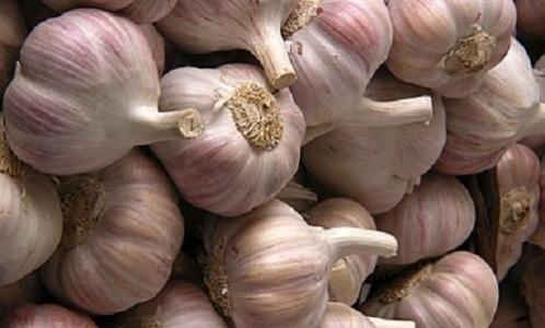 Leyronas, C., Chretien, P. L., Troulet, C., Duffaud, M., Villeneuve, F., Morris, C. E., Hunyadi, H. (2018). First report of Fusarium proliferatum causing garlic clove rot in France. Plant Disease, 102 (12), 2658. DOI : 10.1094/PDIS-06-18-0962-PDN