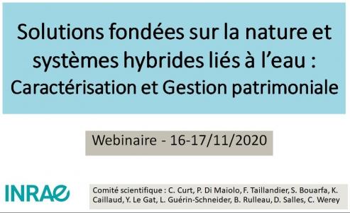 [Webinaire] SFN et systèmes hybrides liés à l'eau