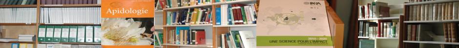 photos d'une bibliothèque