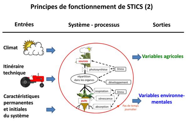 Principes de fonctionnement de Stics : climat, itinéraires techniques, sol, plante et initialisation