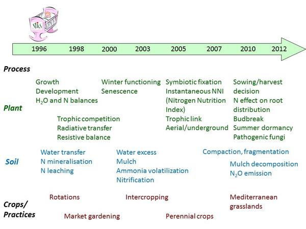 Evolution of Stics processes in time
