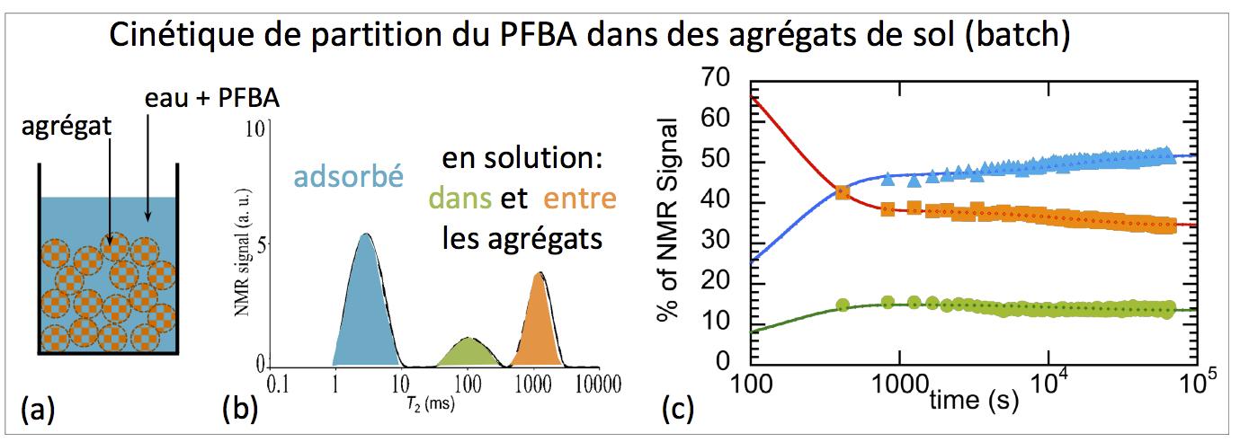 Figure 2. A gauche: schéma d'une expérience d'adsorption en batch. Au milieu: la RMN du fluor permet d'identifier le PFBA dans trois environnements différents. A droite: variations du pourcentage de PFBA dans chaque compartiment: expérience (symboles) et modèles (lignes)