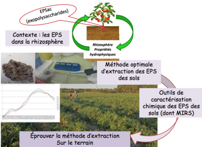 Schéma présentant le contexte et design du projet EPS-TERSYS
