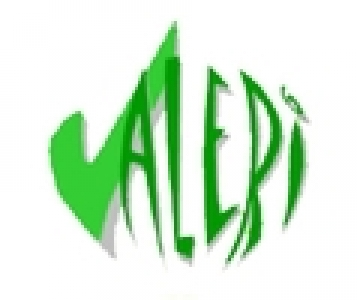 logo_valeri