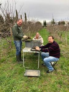 Photo de Serge, Franck et Bernadette effectuant des prélèvements de vers de terre, d'enchytréides et de sol