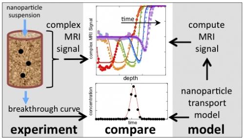 Figure 1: schéma d'une expérience de transport (à gauche) ; données expérimentales (symboles) et modélisées (lignes) (au centre) ; stratégie de calcul du signal IRM modèle (à droite)