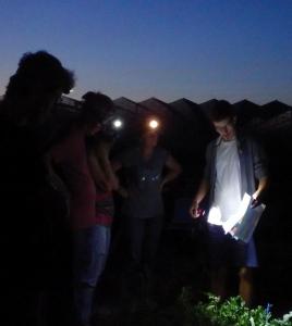 campagne de prélèvements de sols rhizosphériques  sur le site de production de tomate industrielle de l'entreprise SONITO