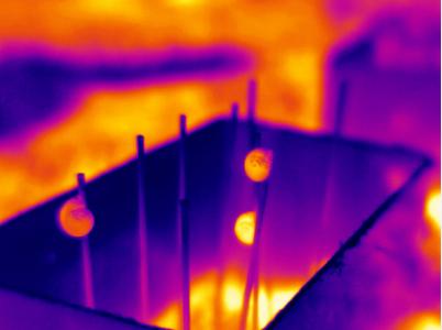 Vue thermique des mesocosmes