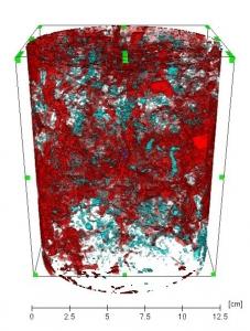 Image représentant la econstruction 3D du réseau percolant en rouge dans une colonne de sol structuré, à partie une acquisition en tomographie RX