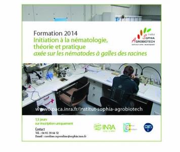 Formation - Initiation à la nématologie