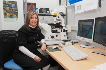 DE ALMEIDA - ENGLER Janice