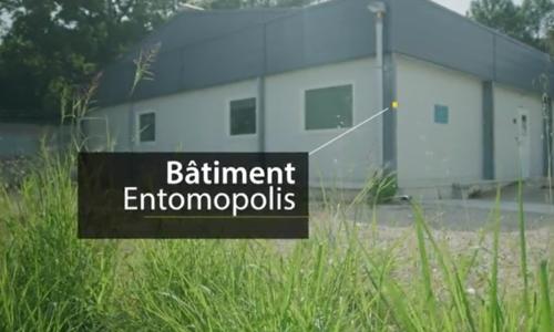 Bâtiment Entomopolis