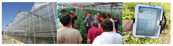 Innovative greenhouse, growers during training course and field decision support system tool.