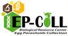 Logo CRE EP-Coll