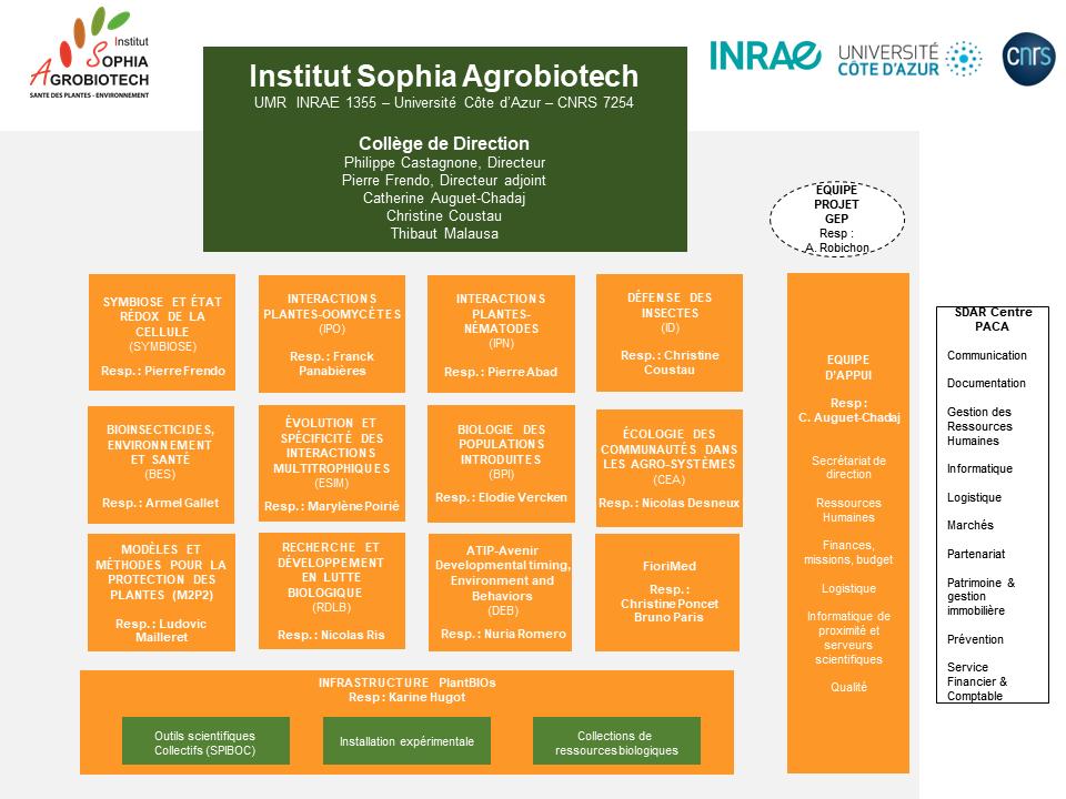 Organigramme Institut Sophia Agrobiotech