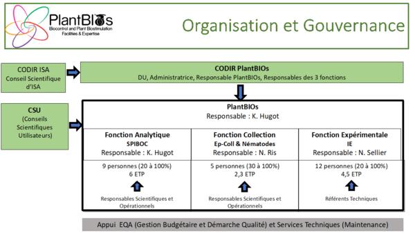 Organisation_gouvernance