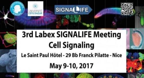 3rd Labex SIGNALIFE Meeting