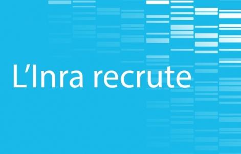L'Inra recrute des chercheurs