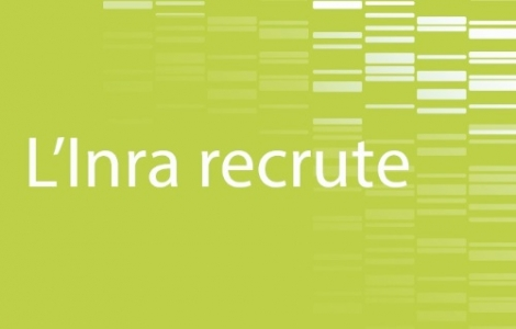 INRA is recruiting