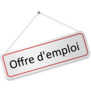 Offre d'emploi - CDD AI