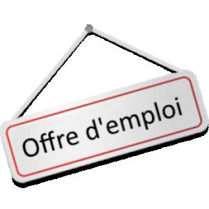 Offre d'emploi - CDD TR