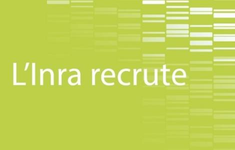 L'Inra recrute 41 chercheurs