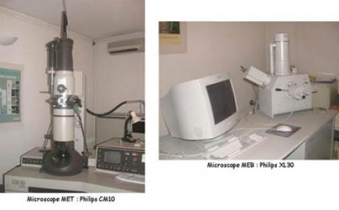 plateau technique microscopie