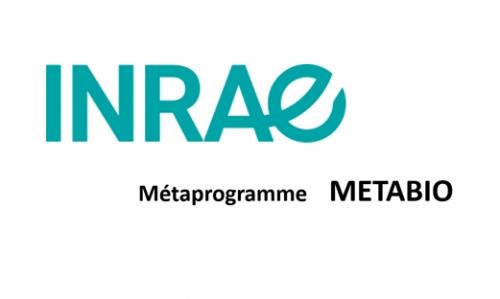 logo INRAE programme metabio