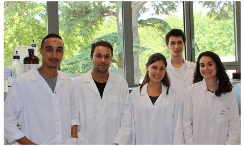 De gauche à droite : Jamal Ayour, Bilel Djebbari, Alexandra Bürgy, Yanis Leroy, Phénicia Oheix