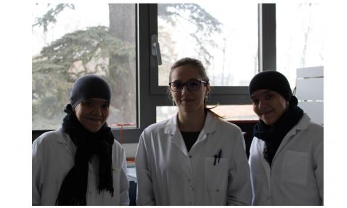 Cindy, Nora et Soria, trois nouvelles stagiaires