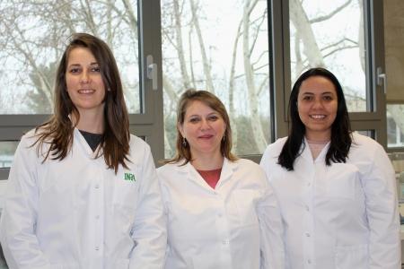 De gauche à droite, Carla Paes Cardoso Cagliari Martins, Maria Hélène Giovanetti Canteri et Ana Paula Maciel Pereira.