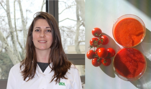 Carla Paes-Martins et son sujet d'étude : la tomate