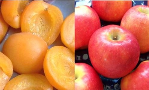 photo abricot et pomme