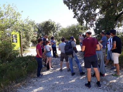 Journée ALTO sur le site agroforestier de Restinclières, mardi 15 juin 2021