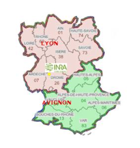 plan regions