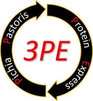logo plateforme